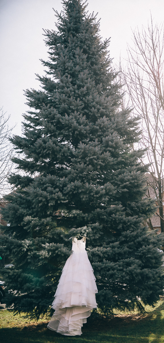 Wedding gown hanging on a pine tree on a wintery day in Ontario